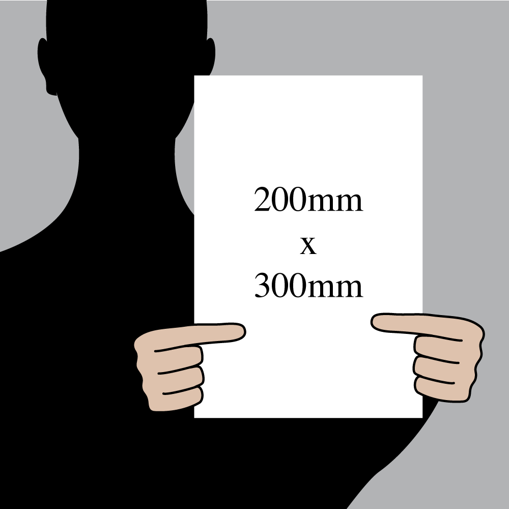 "Size indication of 200mm (8"") / 300mm (12"")"
